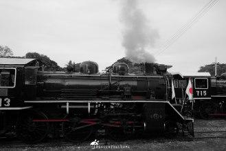 DSCF3965